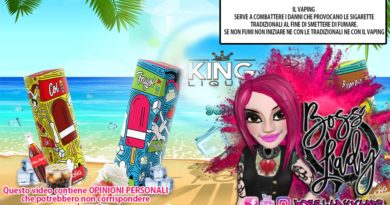 king liquid fragol artic e col artic king liquid fragol artic e col artic King Liquid Fragol Artic e Col Artic recensione Boss Lady Vaper King Liquid Col Artic e Fragol Artic 390x205